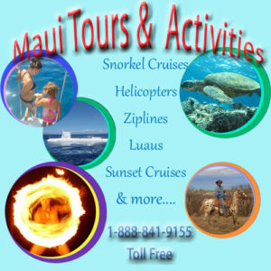 Maui Tours and Activity tickets and reservaions